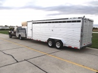 Commercial Gooseneck Livestock Trailers - GNL 76A